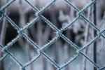 ogrodzenie - Profence